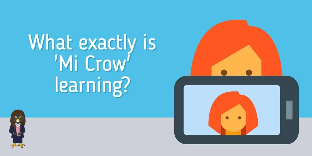 Mi Crow Courses